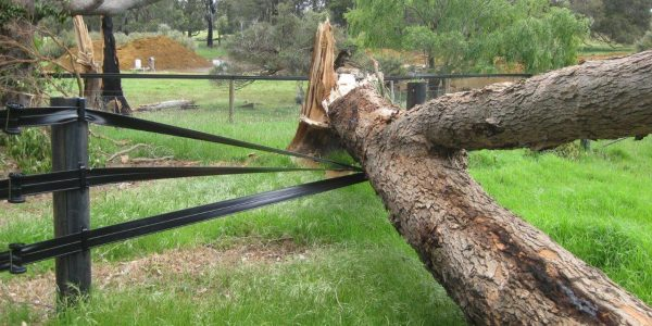 Storm Damage 060