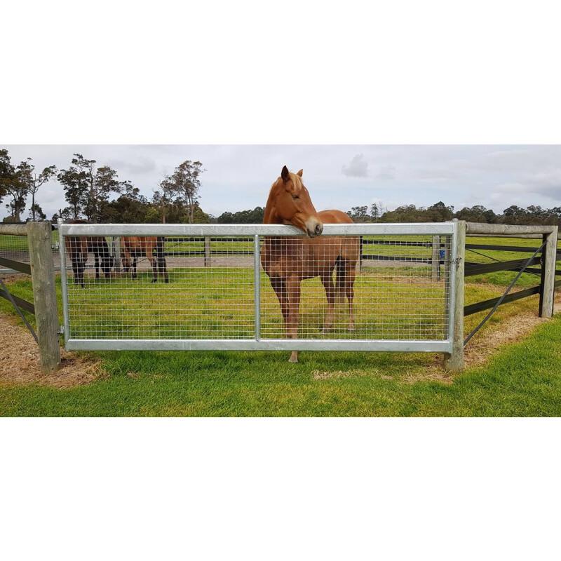 Horse Safe Gate