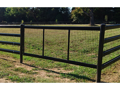 Black Horse Safe Gate