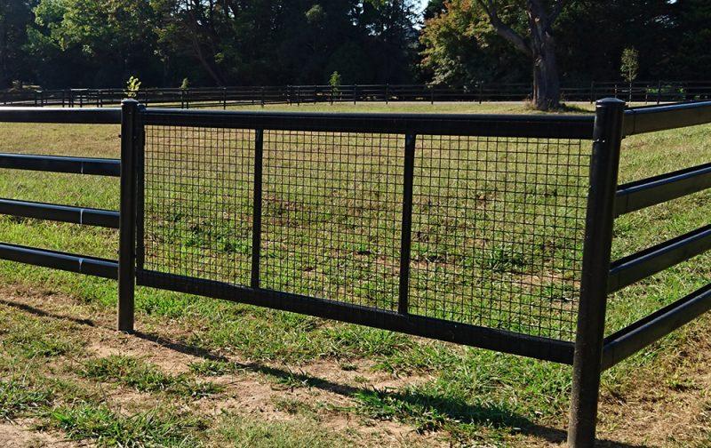 Black Horse Safe Gate